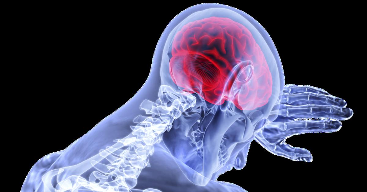 doplňky Omega-3 pomáhají při zánětu mozku